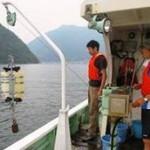 バケツ1杯の水から生息する魚の種類を判定 DNAメタバーコーディング技術