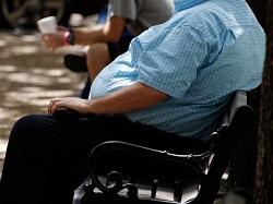 肥満は認知能力を低下させる?