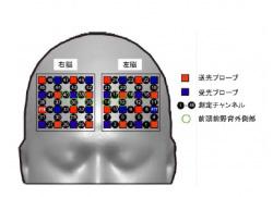 持久力と認知機能