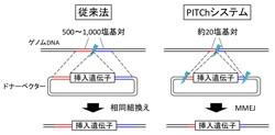 PITChシステム