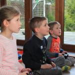 子供時代に暴力的な内容のテレビゲームをすると攻撃性が高まるのか?
