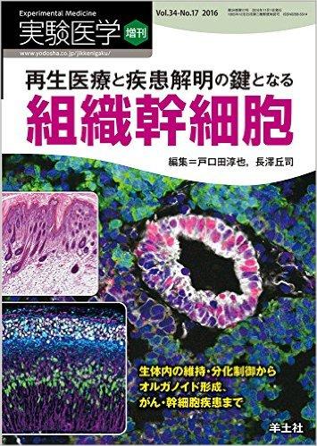再生医療と疾患解明の鍵となる組織幹細胞