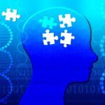 IQの高さと関連する遺伝子を特定、自閉症のリスクとの関連も指摘