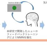 脳波を使って「RとLの違い」が聞き分けられるニューロフィードバック技術を開発